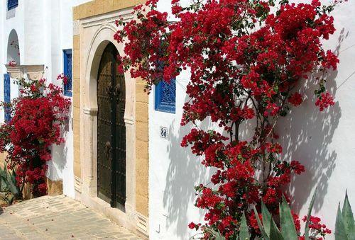 site rencontre tunisien gratuit non payant
